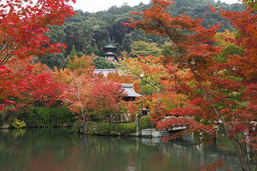 DMC Japan | Timeless Kyoto | 建 -Architecture-